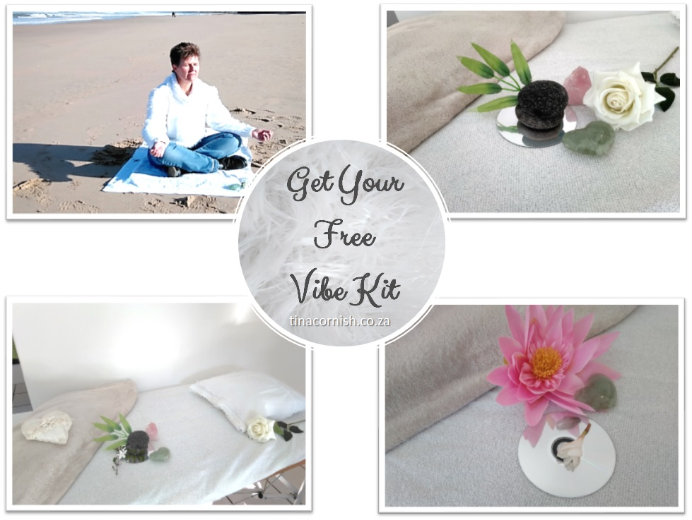 Thrive and get your free vibe kit tina cornish